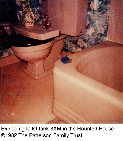 Toilet tank explodes at 3AM - no cause ever found