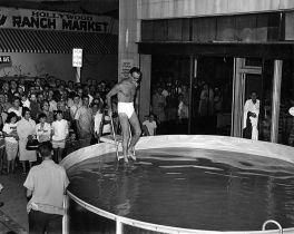 Steve Allen entering swimming pool on Vine Street - The Steve Allen Show
